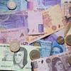 新興国通貨の人気が止まらない~~率先して損をする個人投資家達