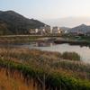 志池(岡山県玉野)