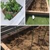 偏食な息子のために今年の家庭菜園をはじめました