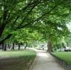 ミモザ・ガーデンの日記  モンソー公園