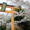 2020年(昨年)の京都3泊4日花見ソロ旅3日目 きぬかけの路周辺 平野神社他編
