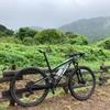 雨のバイク&ラン、今週も千葉スイム