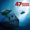 【映画】サメに食われて死ぬか、窒息して死ぬかの二択!海底47メートルを見た感想