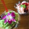 カキ氷 〜 餃子