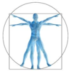 マインドフルネスの基本第2ステップ。全身を意識する。「ブッダの<呼吸>の瞑想」その4