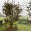 台風の日、リニューアルティシュケース5