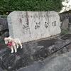 【わんこと旅】 (8月)お散歩だっ!香川!(高松市:峰山公園)