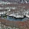 ◆'19/11/23   初冬の鶴間池④