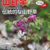 "<span itemprop=""headline"">山野草とミニ盆栽</span>"