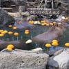 2020年:伊豆シャボテン公園カピバラ紀行