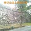 【狂犬通信 Vol.84】下野國安蘇郡・唐沢山城