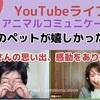 YouTubeライブで、天国の子とアニマルコミュニケーションしました