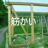 【頑丈な鶏小屋を建てる 】 筋かいの入れ方!