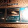 2020/1/31 揚子江の魚II に新展開!
