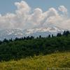 緑の取立山