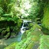 鹿児島市にある世界文化遺産「関吉の疎水溝」を訪れやすい季節です。
