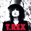 <Pitchfork Sunday Review和訳>T. Rex: The Slider