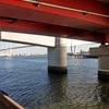 名古屋港・金城橋デイゲームで狙うタケノコメバル・カサゴ
