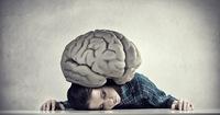 脳は新しいことがお好き!? 「頑張りすぎて疲れた脳」はこうすれば回復する