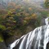 袋田の滝の紅葉!日本三大名瀑に出没してみる!滝と紅葉のコラボレーション