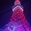 12月20日(金)『イルミネーションと東京タワー』です🗼🎄