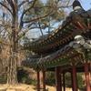 【韓国】【世界遺産】歴代王の愛した庭園・後苑~昌徳宮Part2~