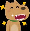 愛犬にいつまでも長生きしてもらいたい!ピッカピカの歯でおやつを食べよう◎