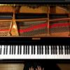 """【今日のYouTube】数々の有名曲を奏でるピアノの旋律""""CANACANA family"""""""
