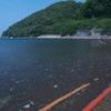 西伊豆の海4(若松海水浴場(たぶんw 江梨の海水浴場 大瀬海水浴場)