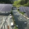 【購入マニュアル~part8~】太陽光発電所運営を税理士に依頼する