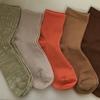 【楽しいお買い物】色とりどりの靴下5足を買った結果。