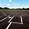 阪南 大学 高等 学校 野球 部