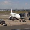 JALで6年ぶりのフライト!飛行機に乗る練習で行った弘前さくらまつりは満開直前でした!