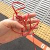 10月13日(木) 3Dで迫るグラム