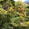 京都旅行に出る
