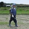 丸三のさつま芋畑2015(土づくり肥料・殺虫剤編)