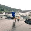 ▷▶︎屋久島を歩こう!~ 50年に一度の大雨災害の時ver.