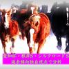【愛知杯2019】【根岸S2019】【シルクロードS2019】過去傾向分析 週末の予想に役立つ情報