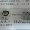 目の病気にかかりやすい犬種