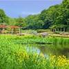 市川動植物園【入園無料】バラ園の見頃,大町公園アクセス,子連れ情報2020年