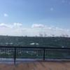 青い空と青い空の色が映えた濃紺の海。秋の大阪の海(大阪港)。YouTube動画。