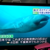 【前兆】今度は三重県沖でメガマウスが捕獲される~東北から九州まで広範囲で大地震に要注意か?
