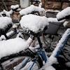 雪の降らない街に雪がやってきた