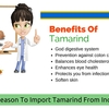 Main Reason To Import Tamarind From Indian Exporters