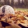 西ボヘミアの醜聞──サッカー協会の腐敗