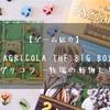 【ゲーム紹介】AGRICOLA(アグリコラ -牧場の動物たち-) THE BIG BOX