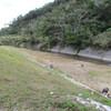 第3回福地川清掃