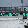 海釣りの万能エサ「青イソメ」について