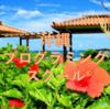 【徹底比較】沖縄のおすすめプログラミングスクール・教室6選!