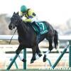 タコイチの【今週の勝負レース】弥生賞!